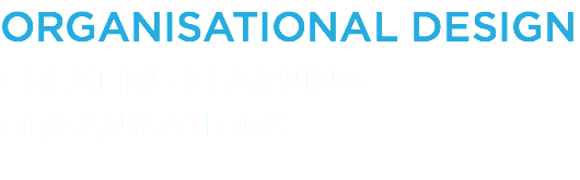 ORGANISATIONAL DESIGN CREATING LEARNING ORGANISATIONS